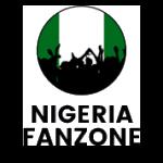 Naija Fan Zone Experience | Web Design Nigeria